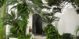 casa-blanca-aralias-3 - Real Estate Puerto Vallarta