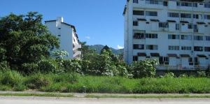 lote-francia2 - Real Estate Puerto Vallarta