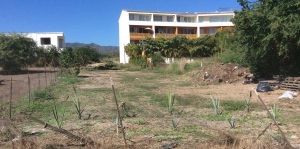 lote-gaviotas-1 - Real Estate Puerto Vallarta