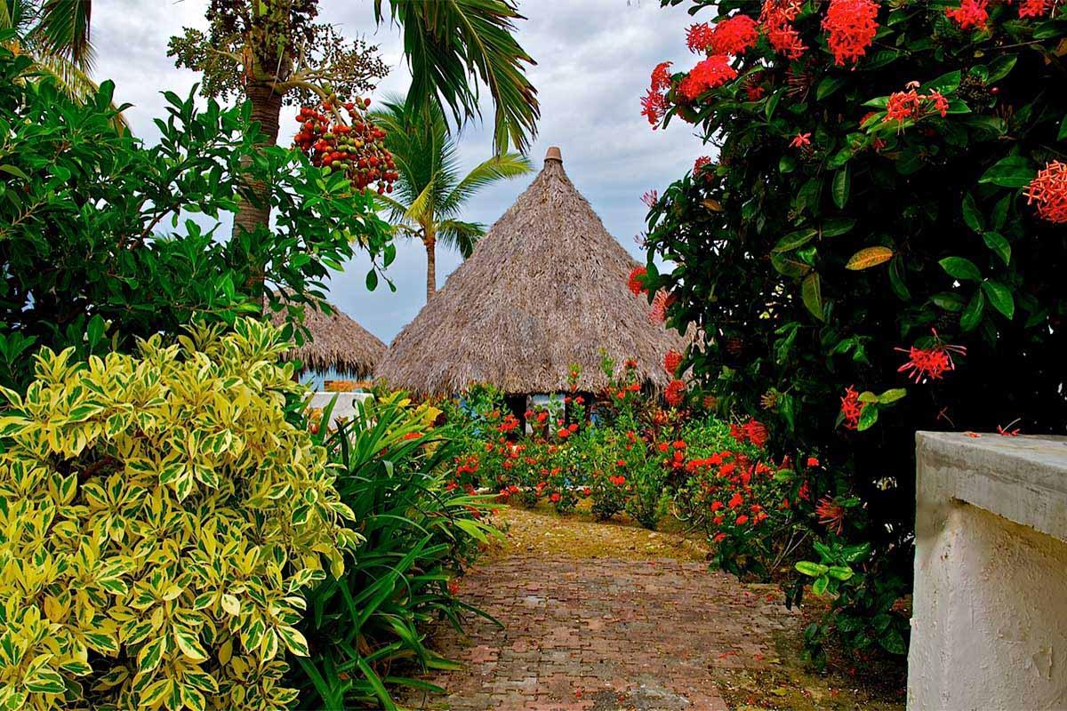 lote-playa-higueras-9 - Real Estate Puerto Vallarta